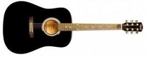 الجيتار الأكوستيك Acoustic Guitar