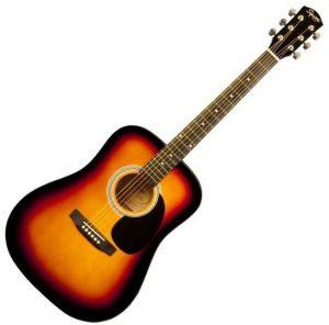 انواع الجيتار