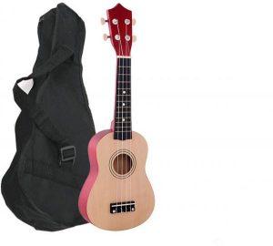 الغيتار الكلاسيكي - GS5 -HM100-2